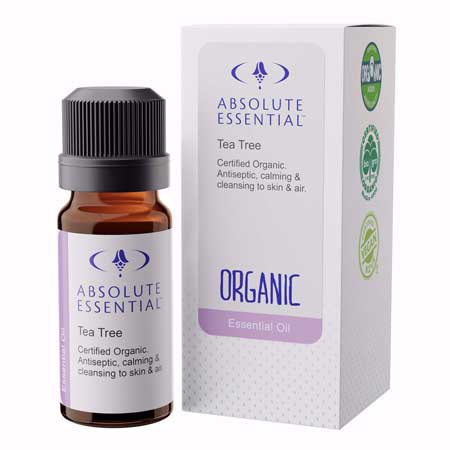 Absolute Essential Tea Tree Essential Oil Product Image